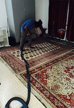 Affordable Persian Rug Cleaning In Artesia Pilar
